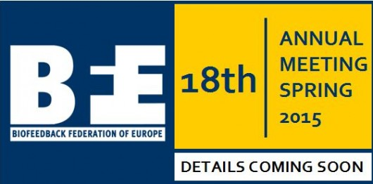BFE 18th Annual Meeting - Interim Logo 3 (horizontal)
