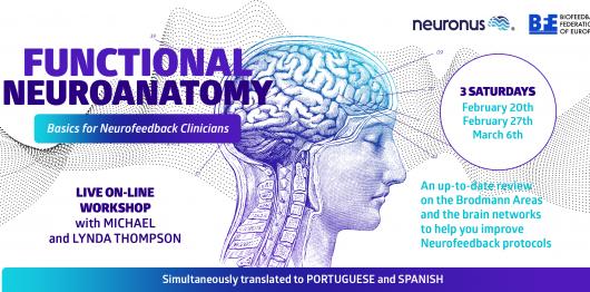 neurofeedback, biofeedback, neuroanatomy